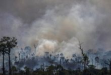 Photo of Mourão prevê até março ações de conselho para proteger Amazônia