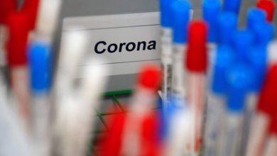 Photo of Coronavírus: em estudo, remédio para piolho foi eficaz contra Covid-19