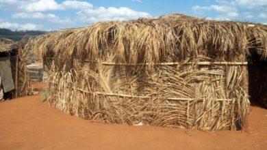 Photo of Ministério da Saúde confirma mais um caso de Covid-19 em aldeias indígenas de AL