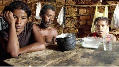Photo of Mais 130 milhões de pessoas podem passar fome em 2020, afirma ONU