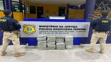 Photo of No sertão, PRF apreende 50kg de maconha que seriam entregues em Maceió