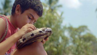 Photo of Filme alagoano é selecionado para o 48º Festival de Gramado