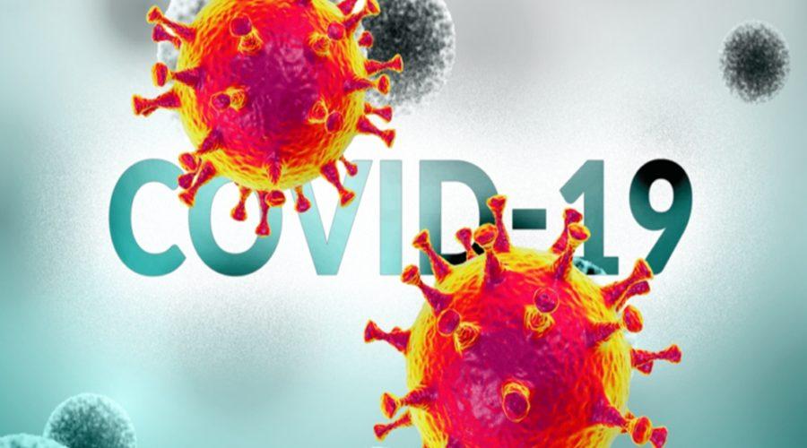 novocoronavirusboletim.2e16d0ba.fill-1120x650