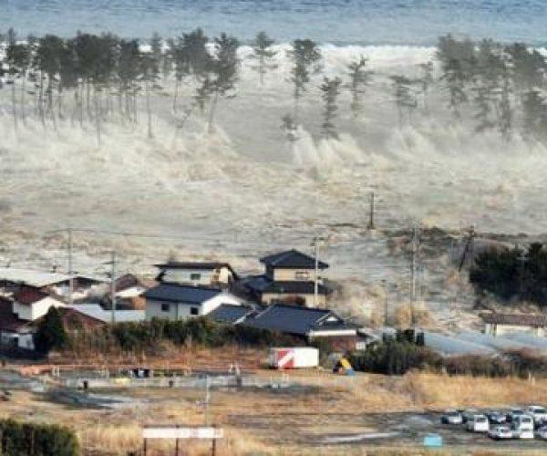 tsunam
