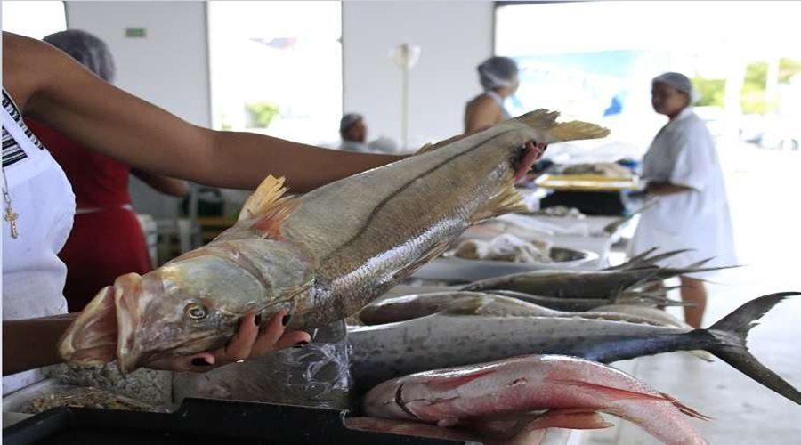 venda-de-peixe-no-centro-pesqueiro-eo0005